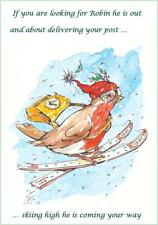 Wildlife Hospital Charity Xmas Cards - Robin Post– pack of 10
