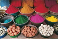Nathan  Puzzle 1000 Pieces 874743 Inde Du Sud / Mysore