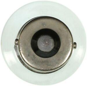 Wagner Lighting BP1141LL Turn Signal Light Bulb
