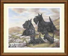 SCOTTISH TERRIERS scotty print 'Highland Breeze'  NEW