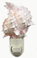 "Real Seashell Night Light Pink Murex Shell Decorative Beach Decor 4""  w. Switch"
