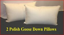 2 KING SIZE PILLOWS - 95% POLISH GOOSE DOWN - MEDIUM - AUSTRALIAN MADE