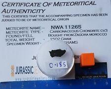 NWA 11265 - CV3 Carbonaceous Chondrite Meteorite - Partial Slice 0.186 grams
