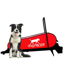 dogPACER LF 3.1 Dog Pacer Treadmill Portable Small Med Large Dogs 1-179 lbs