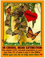 12 Endangered California/Hawaii species - 12 educational postcards with photos