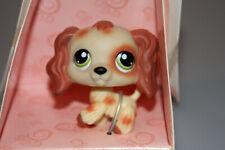 Littlest Pet Shop Brown White Cocker Spaniel Dog Green Eyes #344 Retired 2007