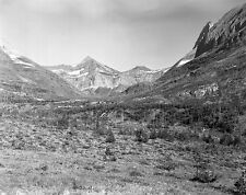 Black and White Mountain and meadow scene 5 X 7 picture.
