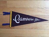 Vtg Camrose Alberta Mini Pennant Felt Banner 1960's Canada Souvenir AB