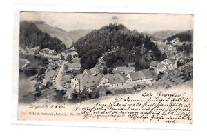 AK Thüringen Ziegenrück Stadt Ansicht 1900