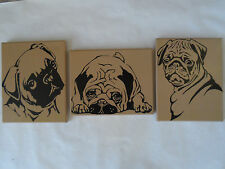 Pug Dog Breed Painted Canvas Wall Hangings / Wall Art - Set of 3