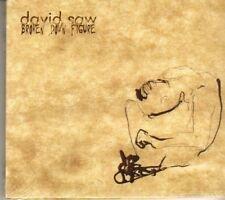 (DG897) David Saw, Broken Down Figure - 2008 sealed CD