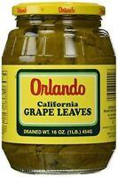 Orlando California Grape Leaves 16 Oz(dry Wt.) Glass,
