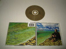 MIKE & THE MECÁNICA/MENDIGO ON A BEACH OF GOLD(VIRGIN/356519)CD ÁLBUM