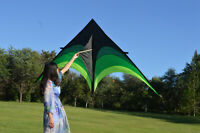 Large Delta Kite For Kids And Adults Single Line Easy To Fly w/ Kite Handle