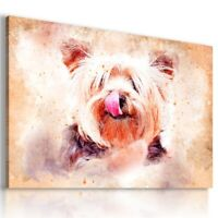 PAINTING DOG YORKSHIRE TERRIER PRINT CANVAS WALL ART AB744 UNFRAMED-ROLLED