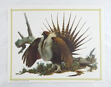 Vintage 1970's Fred Sweney Sage Grouse Print