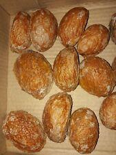 20 Mammea Americana seeds. Mamey apple. Very delicious fruit