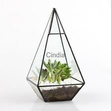 Rustic Style Tabletop Glass Metal Tillandsia Succulent Air Plant Planter Pot