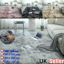 Fluffy Rugs Anti-Slip SHAGGY Rug Super Soft Carpet Mat  Bedroom Living RoomFloor
