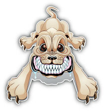 Angry Dog Growling Car Bumper Sticker Decal 5'' x 5''