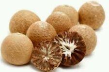 Dried Whole Betel Nut Supari 100% Natural Best Quality 300 G.  P&P UK