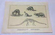 1918 print ~ Dinosaurs Diplodocus,Stegosaurus,Tr iceratops,Hadrosaurus,more