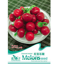 Ruby Red Pepper Seed Ornamental Red Pepper Seeds ~1 Pack 20 Seeds.