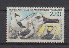 French Antarctica Taaf 262 Bird - Birds (MNH)