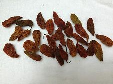 25 LARGE DRIED GHOST PEPPER CHILI BHUT JOLOKIA PODS W/ SEEDS HOTTEST SCOVILLE