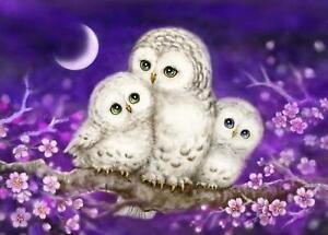 Grafitec Printed Tapestry/Needlepoint Canvas – Owl Family