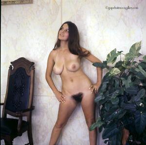 Bunny Yeager Estate 1970 Color Camera Transparency Nude Men's Magazine Model NR