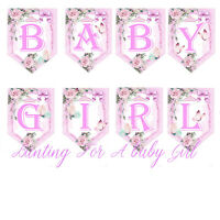 Bunting Princess Baby Girl/ Pink Baby Shower Garland/ Welcome New Baby Girl