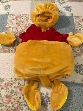 Disney Store Size 18-24 Months Winnie the Pooh 6-Piece Costume