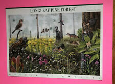 Sc #3611 ~ Full Pane Of Ten 34 cent Longleaf Pine Forest Stamps