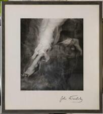 John Wimberley Descending Angel Framed Photography Print 25x28 g50