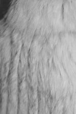 100% REAL SILVER FOX FUR S/10 BEAUTIFULLY SOFT LEATHER INSERT STUNNING COAT
