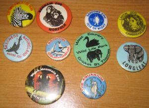 British ZOO Wildlife park excellent vintage 1960s or 1970s souvenir pin BADGE