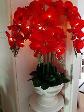 Lumida Flora Orchidee Pokal rot beleuchtet LED Timer