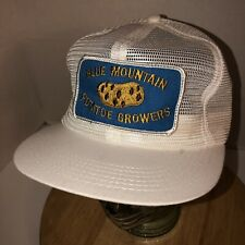 VTG BLUE MOUNTAIN POTATOE GROWERS 70s 80s USA K-Brand Trucker Hat Cap Snapback