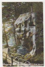 Dripping Well, Knaresborough Postcard, B390