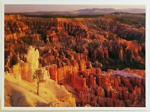 Claron Bryce Canyon National Park Utah Postcard