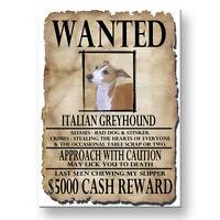 ITALIAN GREYHOUND Wanted Poster FRIDGE MAGNET Iggie DOG