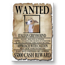 Italian Greyhound Wanted Poster Fridge Magnet Iggie Dog
