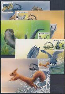 XC66719 Belgium Buzin animals fauna flora wildlife maxicards used