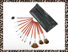 Christmas Gift Professional 12 Pcs Wooden Cosmetic Makeup Brushes Set + Case