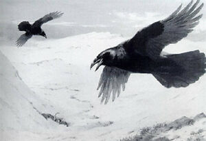 Archibald Thorburn A4 print the ravens corrie