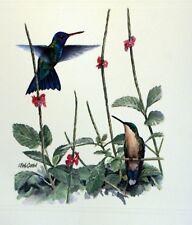Dominica WWF Birds of the Caribe PANEL PASTILLA Premier Día 1° FDC 829