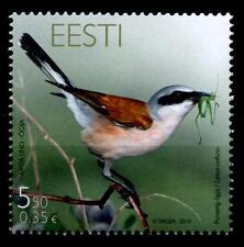 Vögel. Neuntöter. 1W. Estland 2010