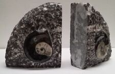 Quarter moon black Chiseled and Carved Book Ends with fossils