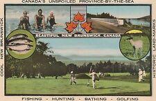 Vacation in Beautiful New Brunswick Canada Advertising Postcard